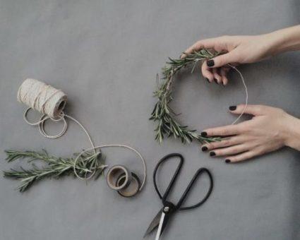 romarin-ciseaux-serre-tete-fil-main