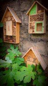 trois-hotels-à-insectes