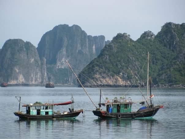 deux-jonques-dans-baie-d'halong