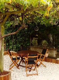 salon-jardin-en-bois-sous-vigne